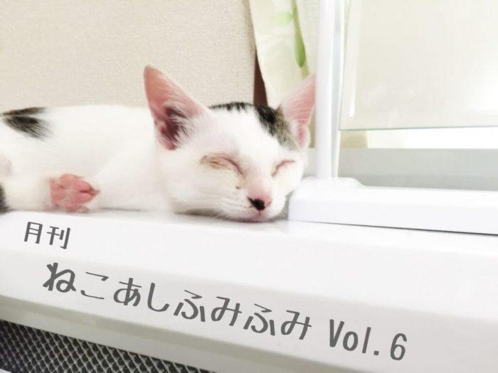 月刊ねこあしふみふみ Vol.6