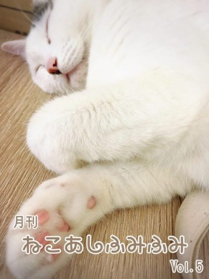 月刊ねこあしふみふみ Vol.5