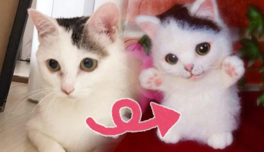 飼い猫の思い出を形に【羊毛フェルトのオーダーが簡単になるアプリ】